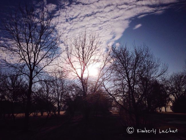 Darkness And Light Light And Shadow January 2015 Sky Collection Tree_collection  EyeEm Nature Lover Clouds Sky And Clouds Nature Connected With Nature