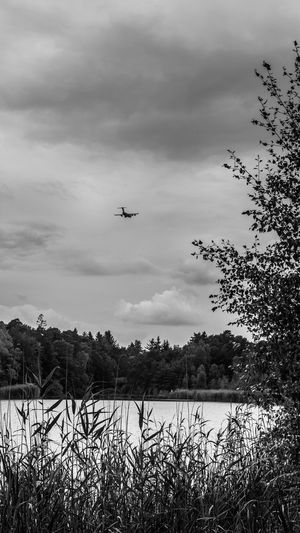 C-17 approaching Ramstein Airbase Air Corridor Air Vehicle Aircraft Airplane Approach Path Approaching C-17 Carrier Cloud - Sky Clouds Day Flying Forest Kaiserslautern Lake Landscape Nature No People Outdoors Ramstein Ramstein AB Scenics Sky Trees Vogelwoog
