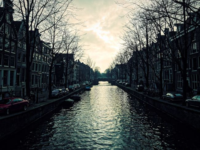 Amsterdam Architecture Bare Tree Canal City Light And Shadow Residential District Tourism Travel Destinations Tree Vintage Water Waterfront Claudetheen