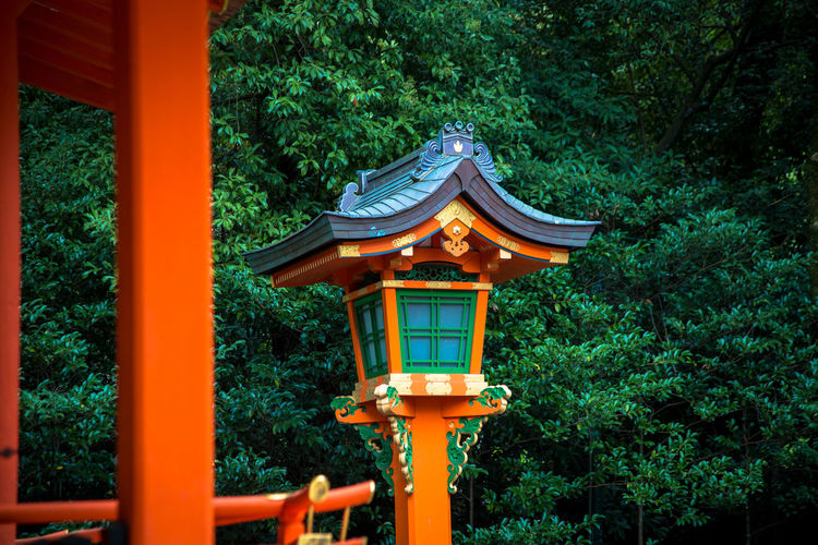 Fushimi Inari-taisha Shrine in Kyoto Japan Fushimi Inari-taisha Architectural Column Architecture Building Exterior Built Structure Close-up Day Green Color Growth Kyoto Nature No People Outdoors Tree