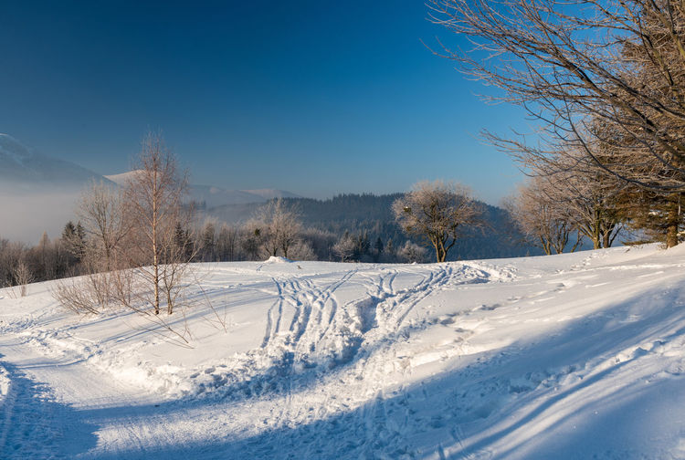 Snow covered field by trees against blue sky