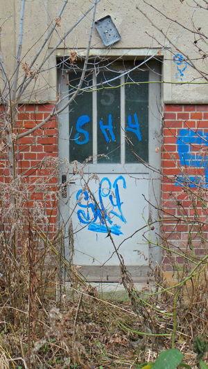 Architecture Architektur Door Fenster Fenster Und Türen Jahreszeiten Leipzig Season  Tür Window Windows And Doors