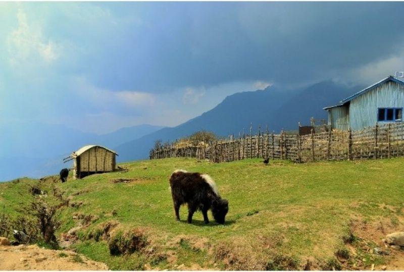 Himalayas HimalayaScape Himalayas, India Tranquil Scene Tranquil Serene Beautiful Nature Landscape_photography Landscapes Nature Photography