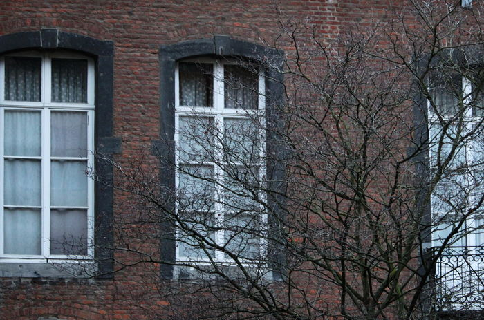 Belgium Namur Architecture Bare Tree Branch Building Exterior Built Structure Day No People November 2017 Outdoors Tree Window
