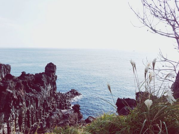 The scenery is so nice here! I'm loving jeju!! JEJU ISLAND  Korea Nature EyeEm Nature Lover
