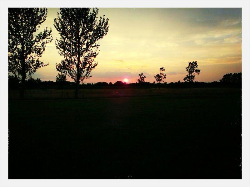 sun set at the golf course Golfing