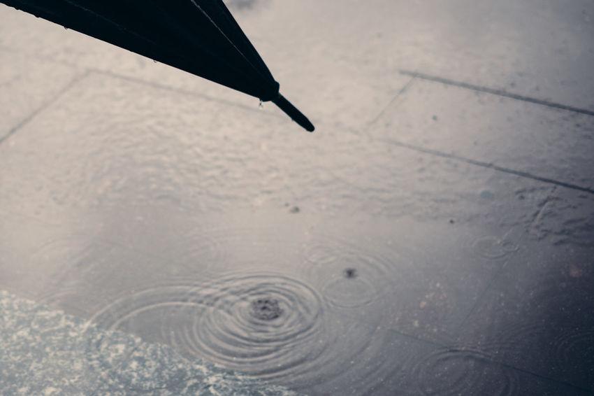 Floor Rainy Umbrella Water