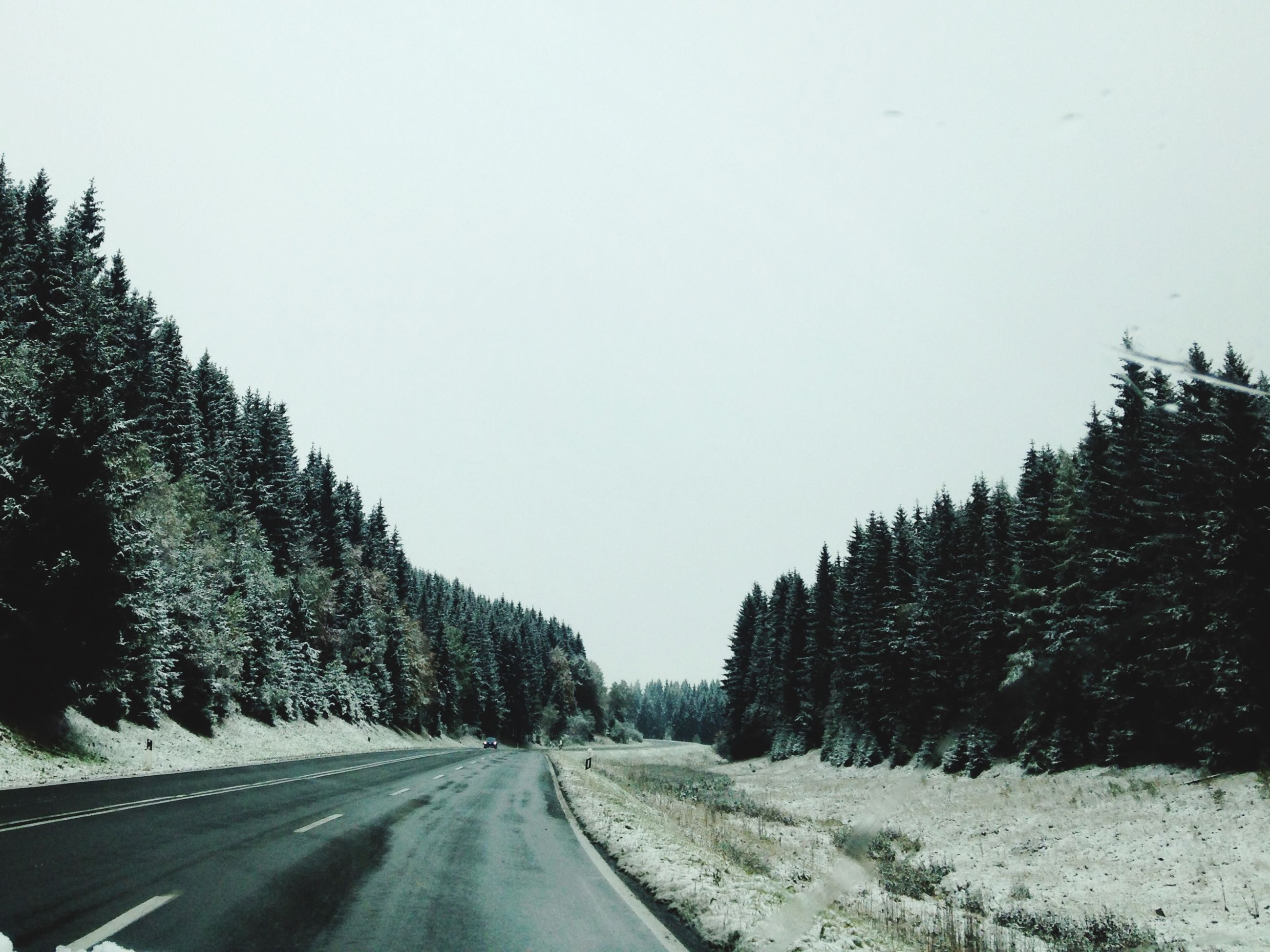 snow, clear sky, winter, cold temperature, road, the way forward, tree, copy space, transportation, season, weather, tranquility, tranquil scene, diminishing perspective, nature, vanishing point, covering, beauty in nature, empty road, scenics