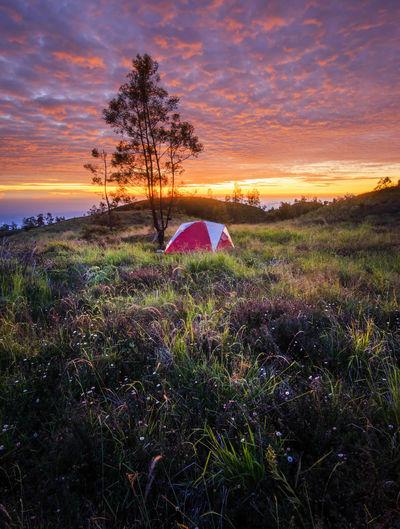 Camping at top