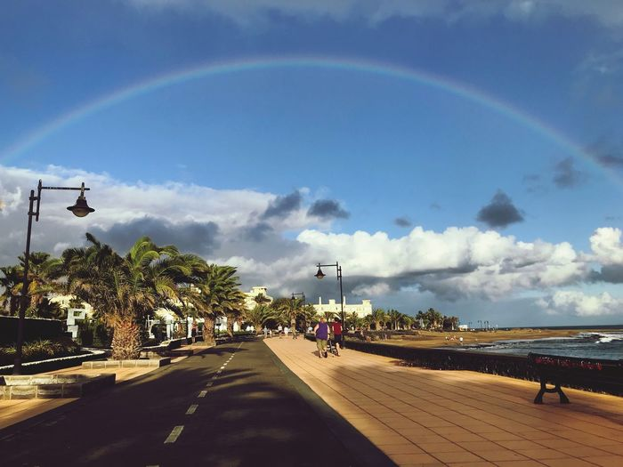 Palm Tree Canary Islands Canarias Shore Seascape Puerto Del Carmen Rainbow Lanzarote Sky Cloud - Sky Transportation Tree Road Plant Rainbow Mode Of Transportation Nature Direction Street Land Vehicle City Day Incidental People Car The Way Forward Architecture Outdoors Transportation Road Tree