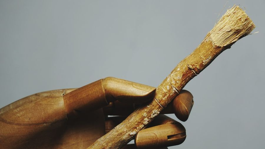 The miswak is a