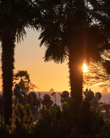 Tree Plant Sunset Sky Group Of People Real People Nature Men Growth Women Beauty In Nature Orange Color Crowd Lifestyles Outdoors Land People Adult Palm Tree Sun