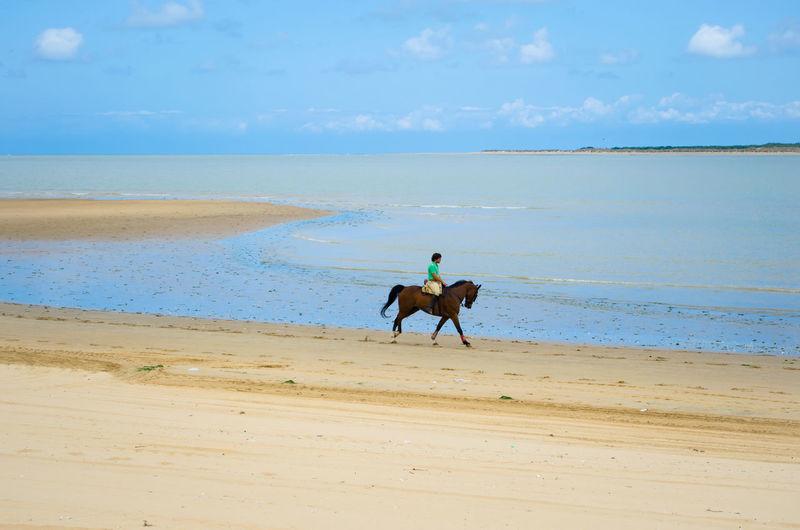 Man Riding Horse On Beach By Sea Against Sky