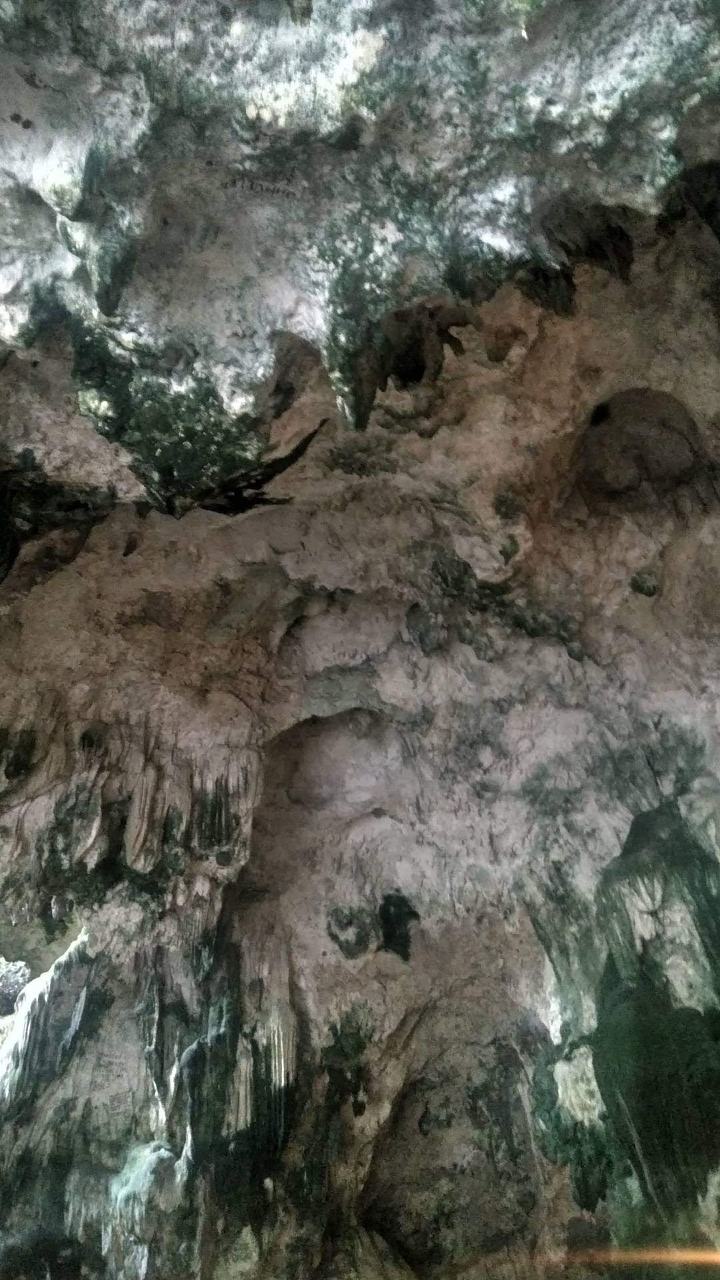 rock, geology, no people, beauty in nature, rock formation, nature, physical geography, cave, day, textured, water, rough, outdoors, non-urban scene, tranquility, pattern, formation, scenics - nature, low angle view, stalactite, full frame, backgrounds
