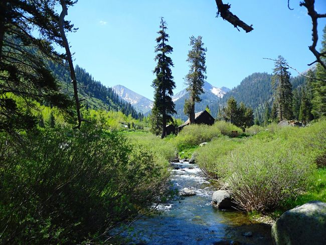 Mountains Stream Kings Canyon Calfornia USA Travel Landscape