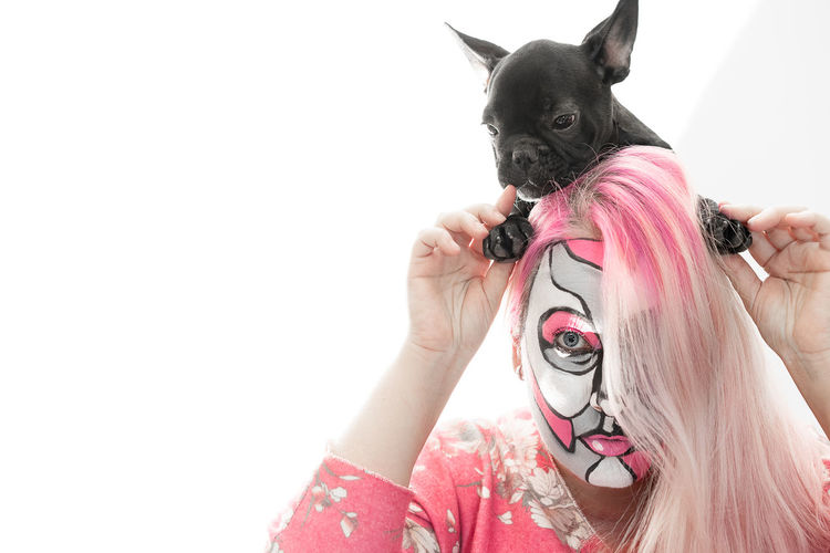 Frenchbulldog Frenchie One Animal Pet Looking At Camera Pink Togetherness Bonding One Person One Woman Only Woman Face Paint Face Painting Face Painted Human Hand White Background Pets Women Dog Portrait Red Studio Shot Pink Color French Bulldog Bulldog Lap Dog Disguise Pampered Pets Purebred Dog Puppy