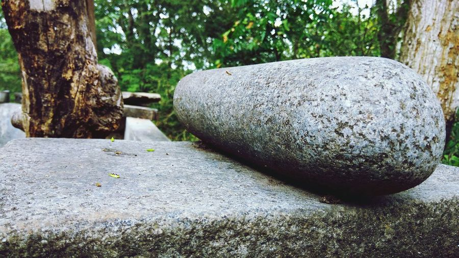 Rock - Object Grinding Stone Low Section Daylight Outdoors Full Frame