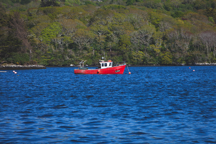 County Cork Ireland Beauty In Nature Day Fishing Boat Glengarriff Mode Of Transportation Nature Nautical Vessel No People Non-urban Scene Outdoors Plant Red Rippled Scenics - Nature Sea Tranquil Scene Tranquility Transportation Tree Water Waterfront