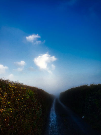 Agriculture Beauty In Nature Blue Cloud - Sky Day Landscape Misty Lane Nature No People Outdoors Sky Tree