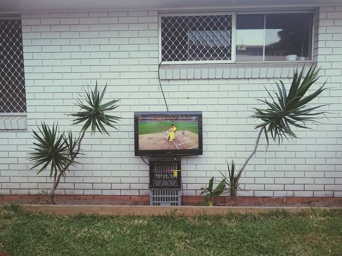 Perfect set up for the cricket world cup CricketWorldCup Backyard Relaxing Enjoying Life Australia Champions