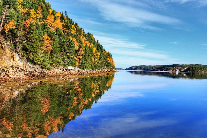 Water Sky Tranquil Scene Beauty In Nature Scenics Nature Reflection Tranquility Outdoors Lake No People Mountain Tree Day Cloud - Sky Canada Reflection Fall Newfoundland EyeEm Best Shots Eye4photography  Landscape