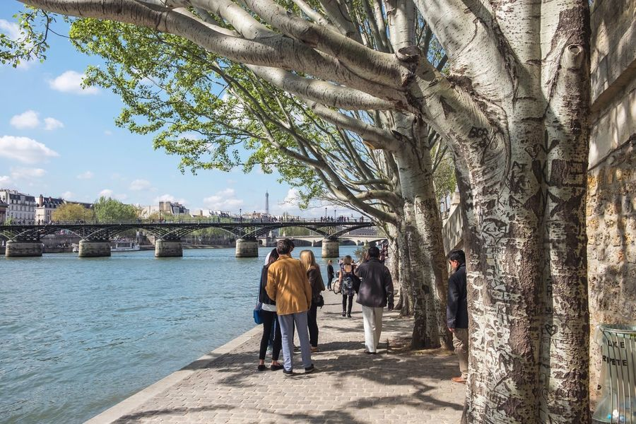 France Paris Wanderlust City Outdoors Real People Travel Destinations Tree Water