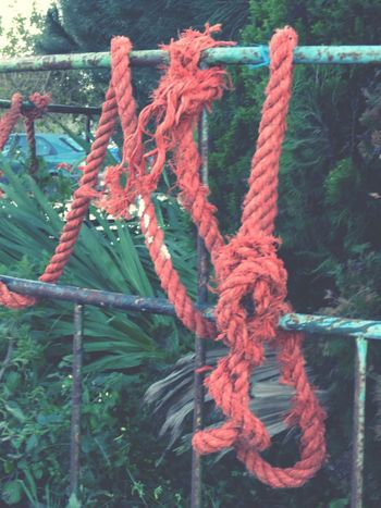 Abstract Rope Red Plants And Flowers Detail Man Made Object EyeEm Best Shots EyeEm Gallery Learn & Shoot: Simplicity Complexity Textures And Surfaces Fence Tied Protection Hanging Metallic Rusty Close-up EyeEm Nature Lover Showcase April