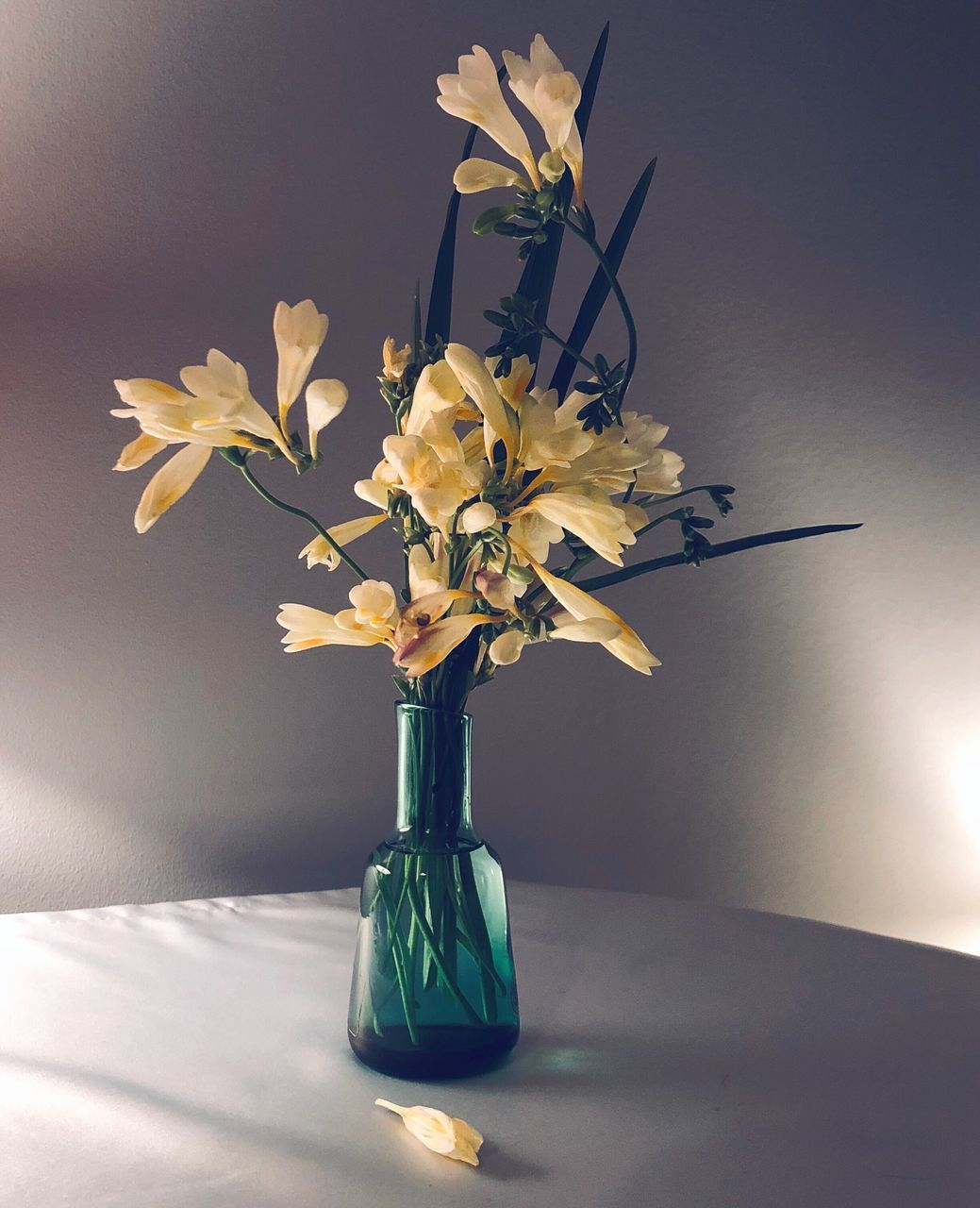 flower, vase, petal, flower head, fragility, flower arrangement, table, beauty in nature, blossom, indoors, bouquet, no people, daffodil, freshness, nature, branch, leaf, close-up, blooming, day