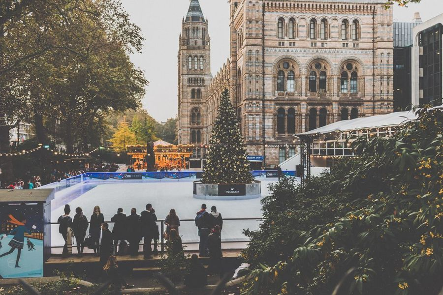 Tree Real People Large Group Of People Architecture Outdoors Building Exterior City Built Structure Travel Destinations Winter Cold Temperature Day People Christmas Tree Adult Crowd Ice Rink