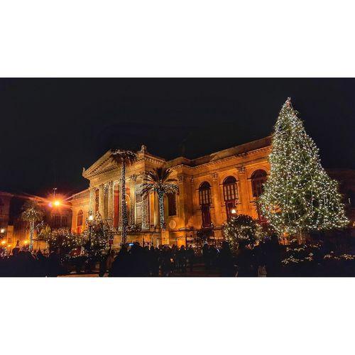 Illuminated christmas tree against clear sky at night