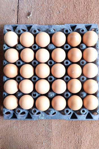 Eggs in the