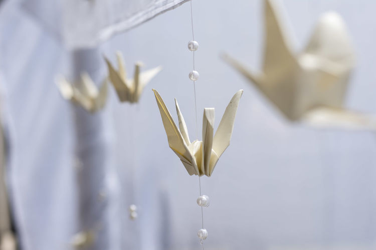 Close-up of decoration hanging indoors