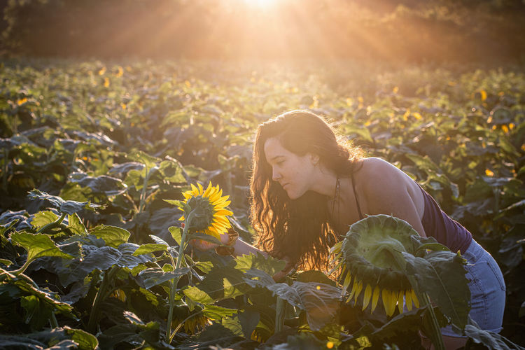 Woman looking at sunflowers in farm