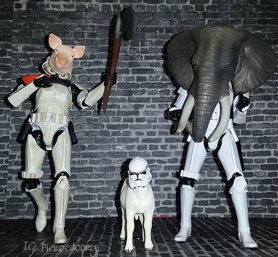 The force awakens....The Purge lol Thepurge TheForceAwakens Porkfacetales