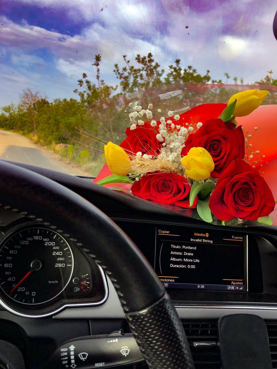 mode of transportation, plant, flower, transportation, flowering plant, control panel, car, dashboard, land vehicle, vehicle interior, nature, car interior, motor vehicle, freshness, glass - material, close-up, windshield, beauty in nature, no people, fragility, flower head, outdoors, bouquet, flower arrangement