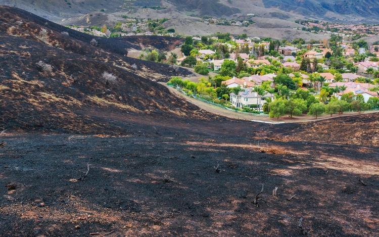 Suburban Neighborhood in Southern California After Wildfire Burned Local Hills Aftermath Afterwards Burn California Fortunate  Aerial View Burn Area Close Call Fire Hillside Hillside View Interface Landscape Nature Neighborhood No People Outdoors Scenics Suburbs Wildfire