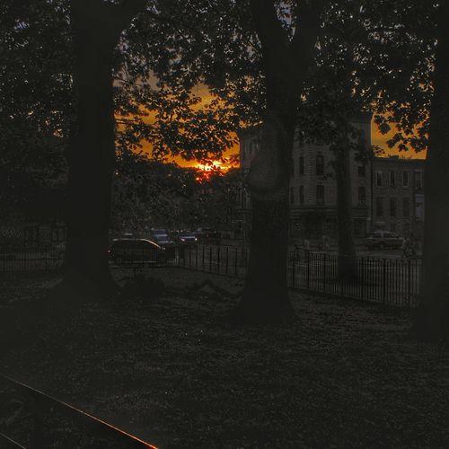 Sky Sunset Park
