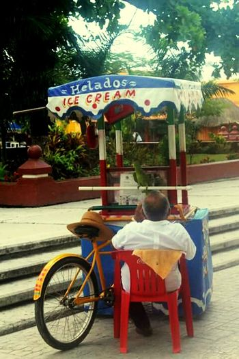 Isla de helados. Ice Cream Bicicleta Bike Job Isla Cozumel Tranquility Hut
