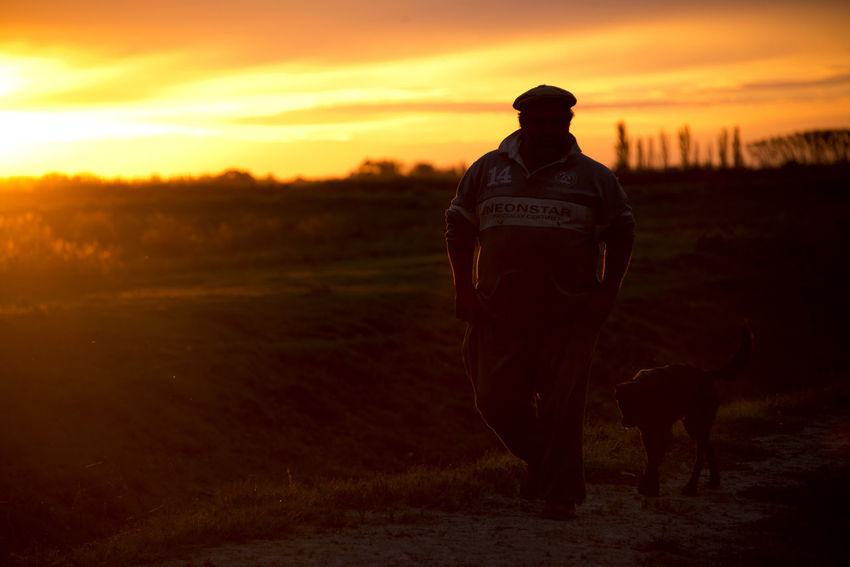 Porcine producer walks to his house Atardecer Campo Nature Orange Sky Rural Sunset Silhouettes Sunset_collection Argentina Argentina Photography Famulari Landscape Men Rural Scene Sunset Walking Wallpaper
