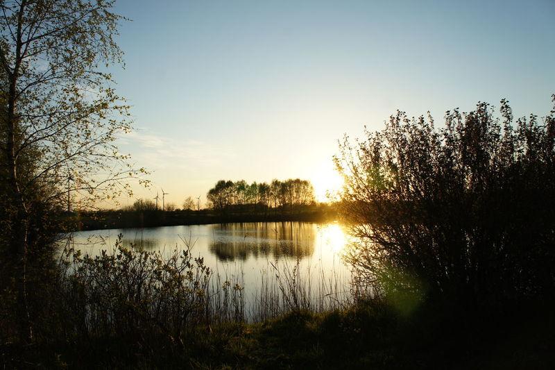 Eastfrisia Calm