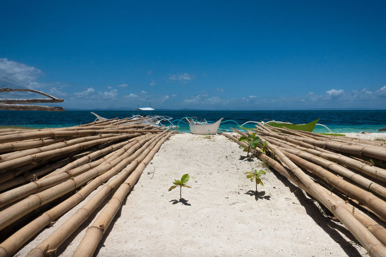 Stacks of large bamboo poles near traditional fishing boats on a tropical beach in Cebu, Philippines ASIA Backpacking Holiday Islands Malapascua Perspective Philippines SE Asia South Pacific Stunning Tropics View Bamboo Beach Filipino Fishing Boat Honeymoon Landscape Paradise Paradise Beach Poles Sea Tropical Vacation Village