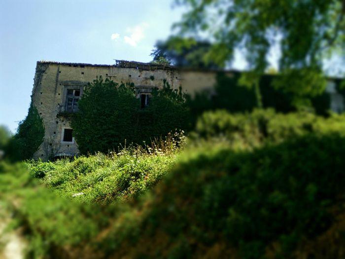 Prince Caracciolo Castel Eyemphotography Eye4photography  Very Italian People Italia EyeEm