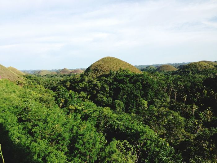 Chocolate Hills Bohol Island Bohol Philippines Bohol Chocolate Hills Bohol Philippines Chocolate Hills Plant Growth Tree Beauty In Nature Cloud - Sky Scenics - Nature Nature Foliage Mountain Outdoors
