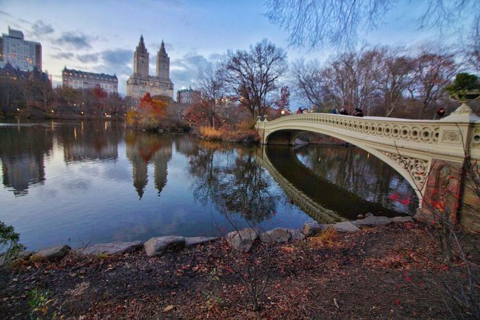 Central Park NYC Tree Reflection Water Sky Architecture Bridge - Man Made Structure Outdoors Nature Photography Nature_collection