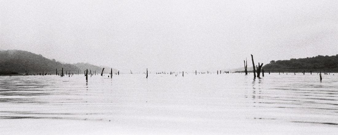 No man sky. Filmphotography Filmneverdies