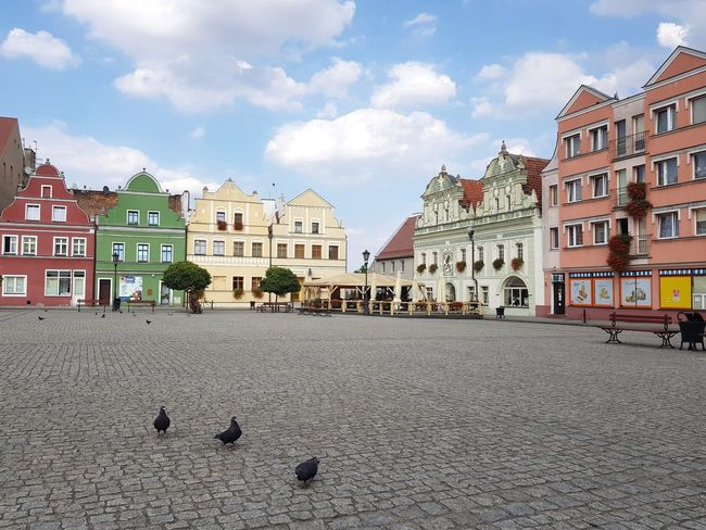 historic tenements in the main square Poland Travel Destinations Tourism Architecture City Bird Cityscape Sky Architecture Building Exterior Built Structure Cloud - Sky Old Town TOWNSCAPE Town Square Residential Structure Townhouse