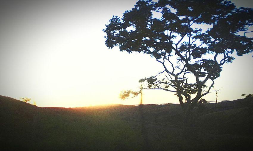 Natureza Nature ♡ Paixao Eterna ??????