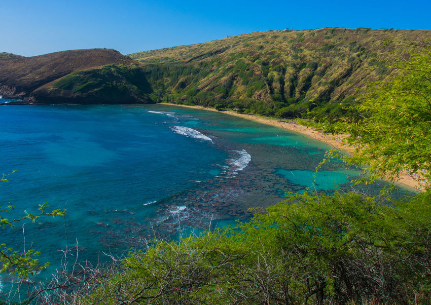 Hanauma Bay classic shot Been There. EyeEm Best Shots Hawaii Landscape_Collection Oahu Beauty In Nature Blue Clear Sky Day Grass Hanauma Bay Landscape Mountain Nature No People Ocean Outdoors Scenery Scenics Sky Tranquil Scene Tranquility Tree Water