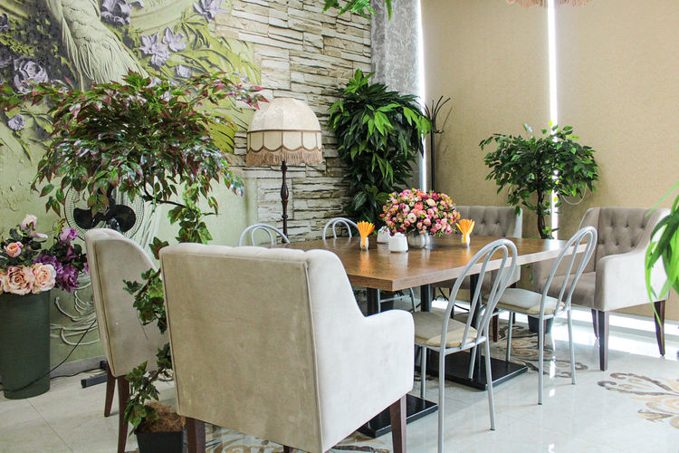 Empty chairs and table in potted plant