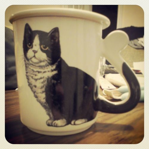 My new mug, oof. Because cats =^-^= Mug Yay Cute Whatafind cats kittens canteven letshavesometea catnip floatingondatcatnip meow